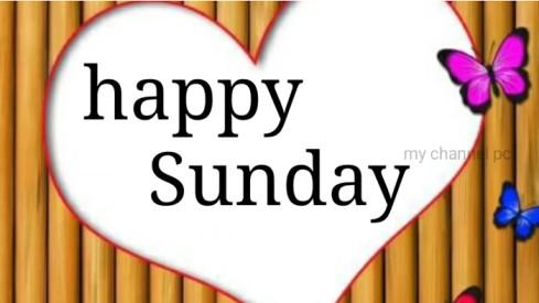 Happy Sunday Good Morning Love Status