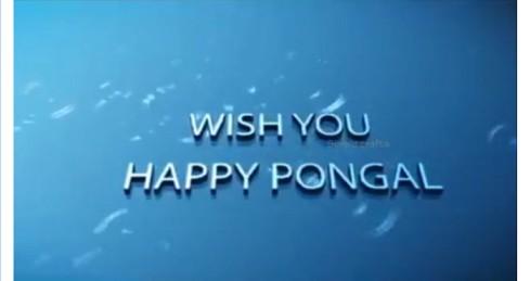 Wishing You Very Happy Pongal Whatsapp Status Video